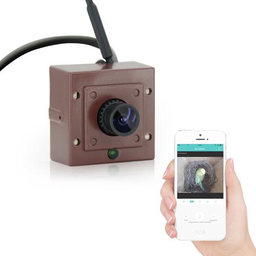 Wireless Bird Box Camera (ASIN GB1E3B3KR)